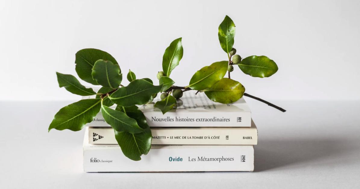 Bücher mit einem Zweig